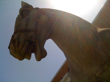 Faux-terracotta horse, PF Chang's